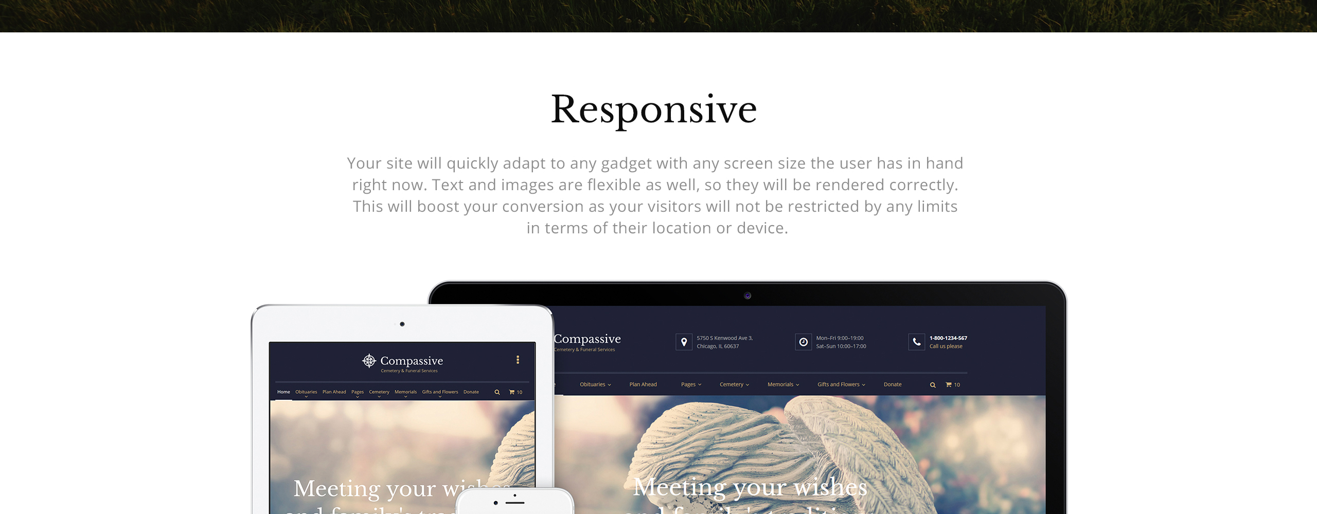Compassive Website Template