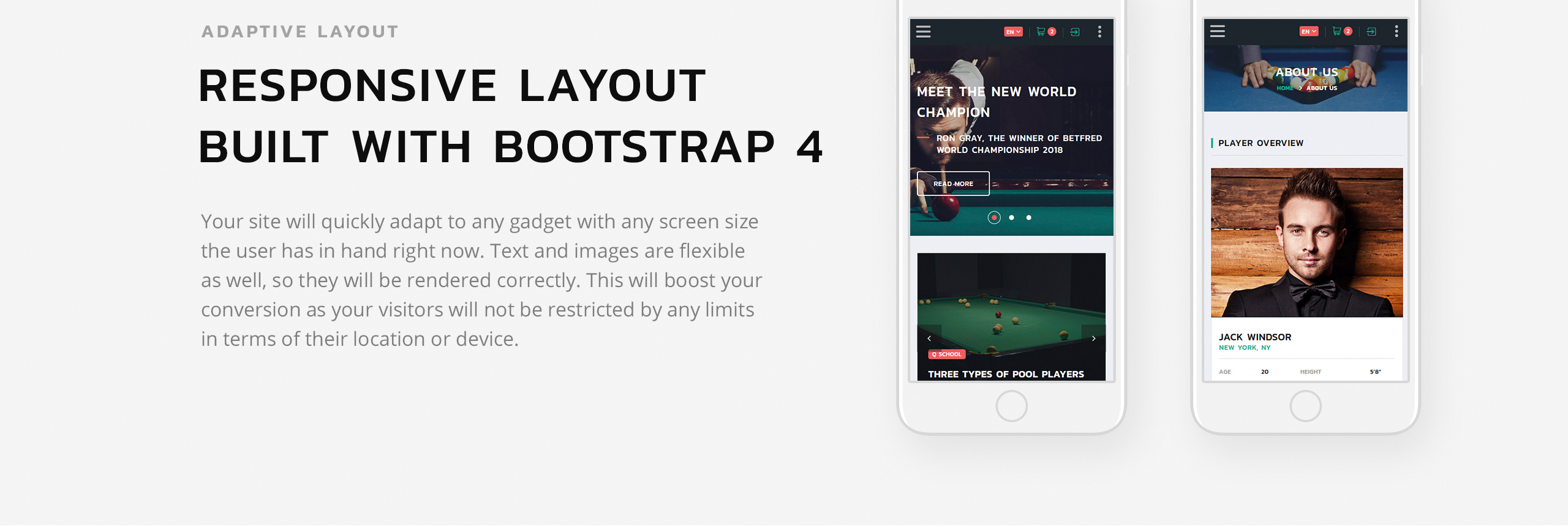 Snooker Website Template
