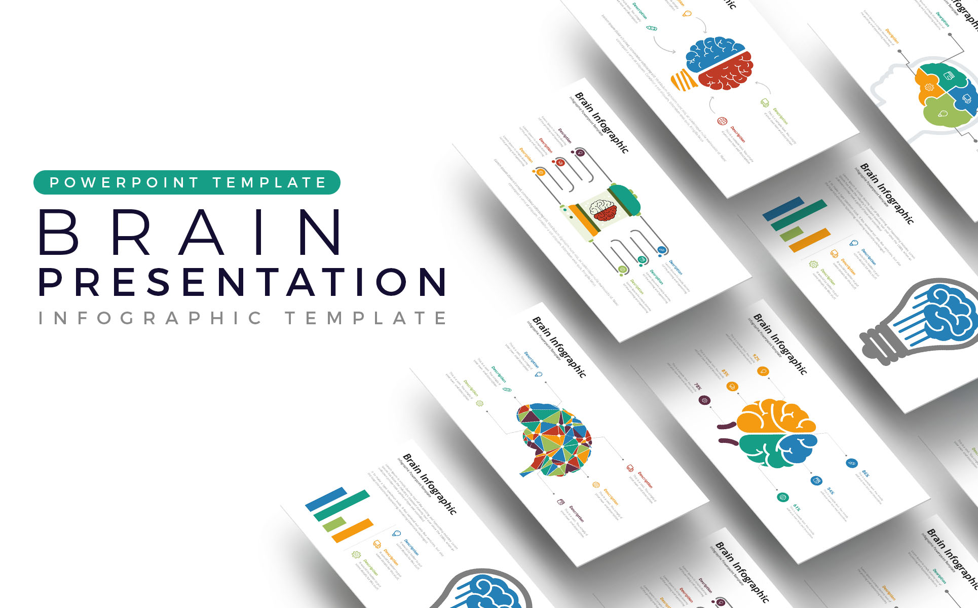 Brain Presentation -  Infographic PowerPoint Template
