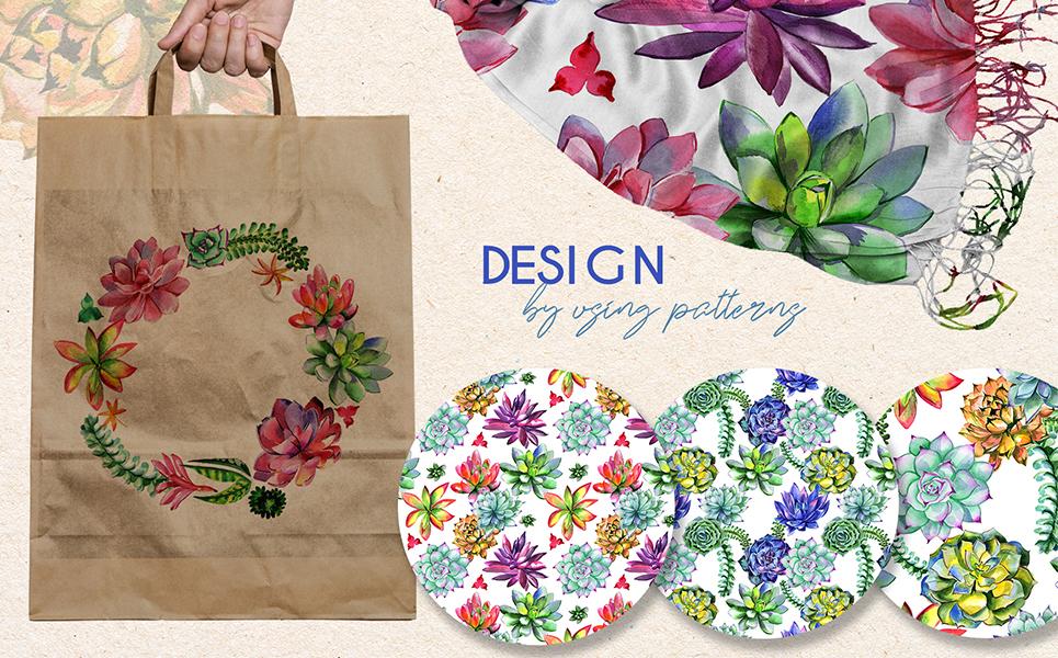 Succulent Plant PNG Watercolor Set Bundles
