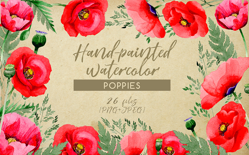 Hand-painted Poppies PNG Watercolor Set Illustrations