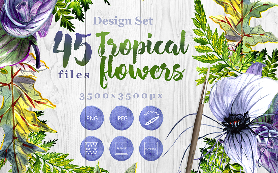 Tropical Flowers PNG Watercolor Set Illustrations