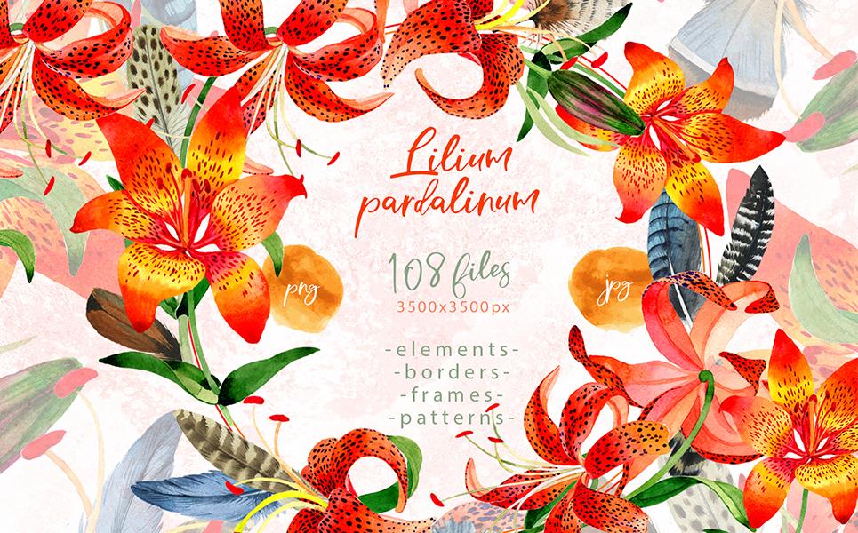 Lilium Pardalinum PNG Watercolor Set Illustrations