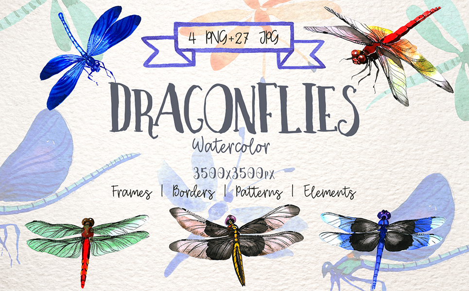 Insect Dragonfly PNG Watercolor Set Illustrations