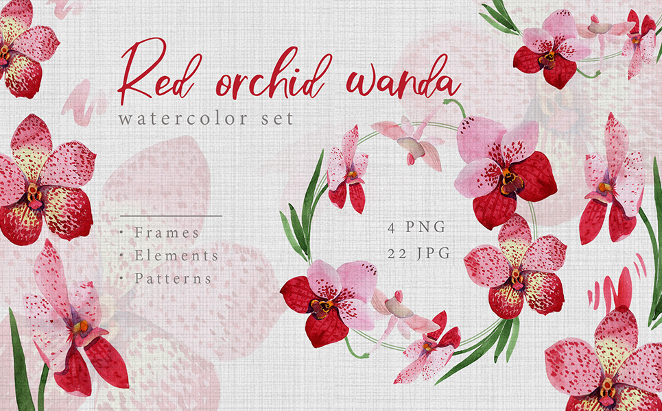 Watercolor Red Orchid Wanda PNG Creative Set Illustrations