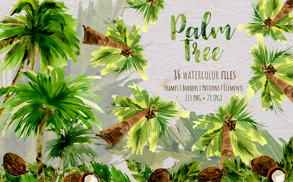 Palm Tree PNG Watercolor Set Illustrations