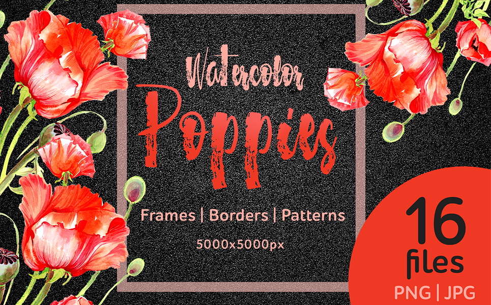 Watercolor red poppies PNG flower set Illustrations