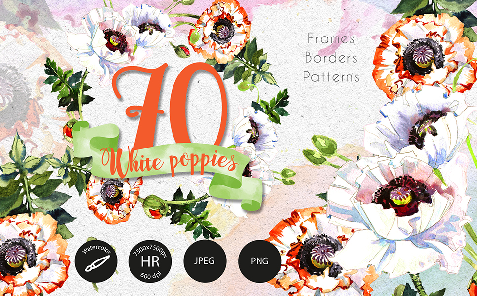 White Poppies PNG Watercolor Set Illustrations
