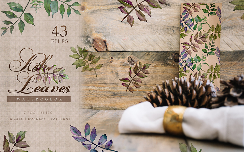 Ash Leaves PNG Watercolor Set Illustrations