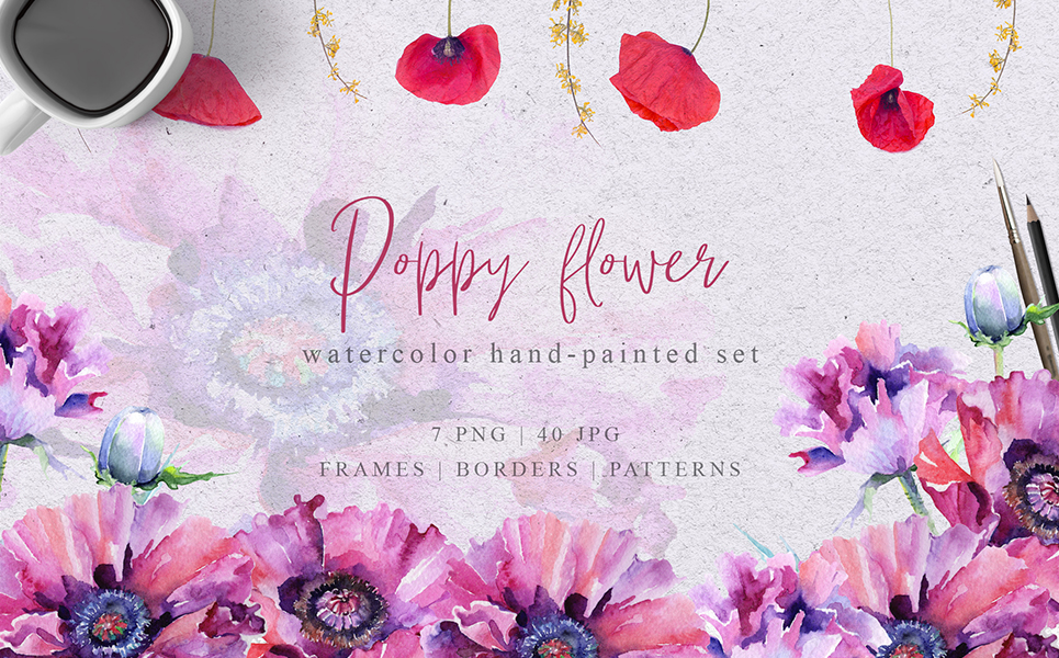 Pink Poppy Flower PNG Watercolor Set Illustrations