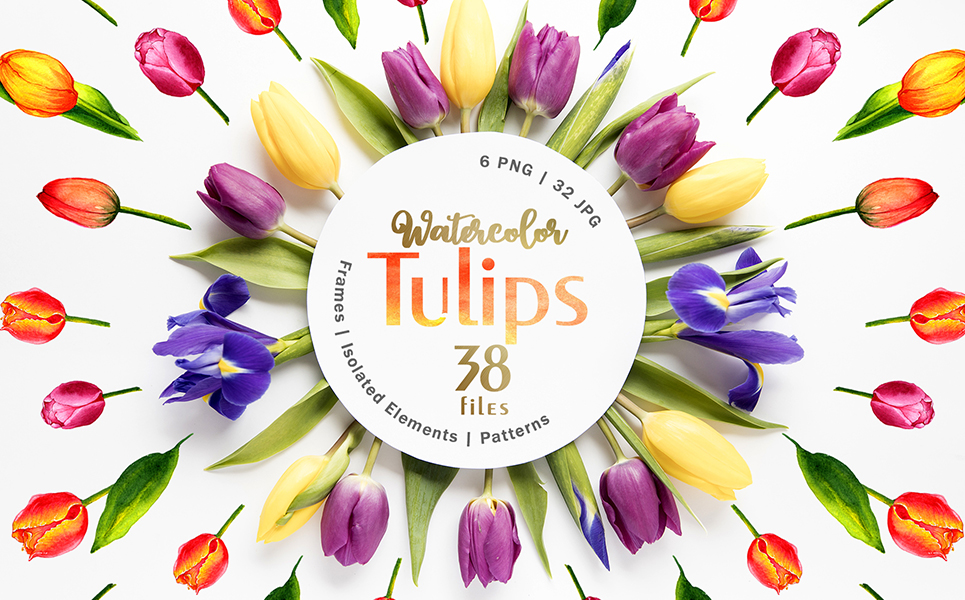 Tulips Watercolor Red Png Illustrations