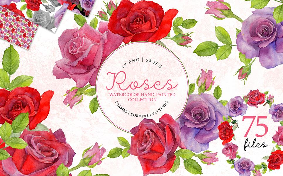 Red Rose Elegant Watercolor png Illustrations