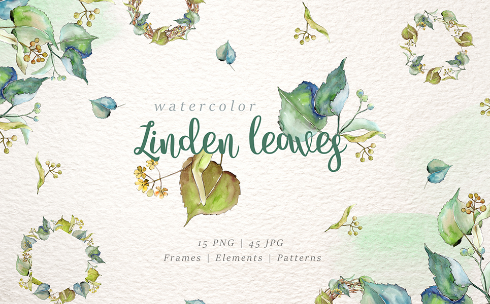 Linden Leaves Watercolor png Illustrations