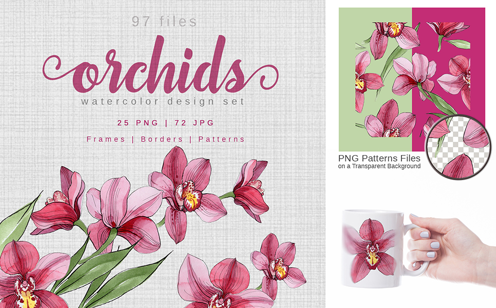 Pink Orchids Watercolor png Illustrations