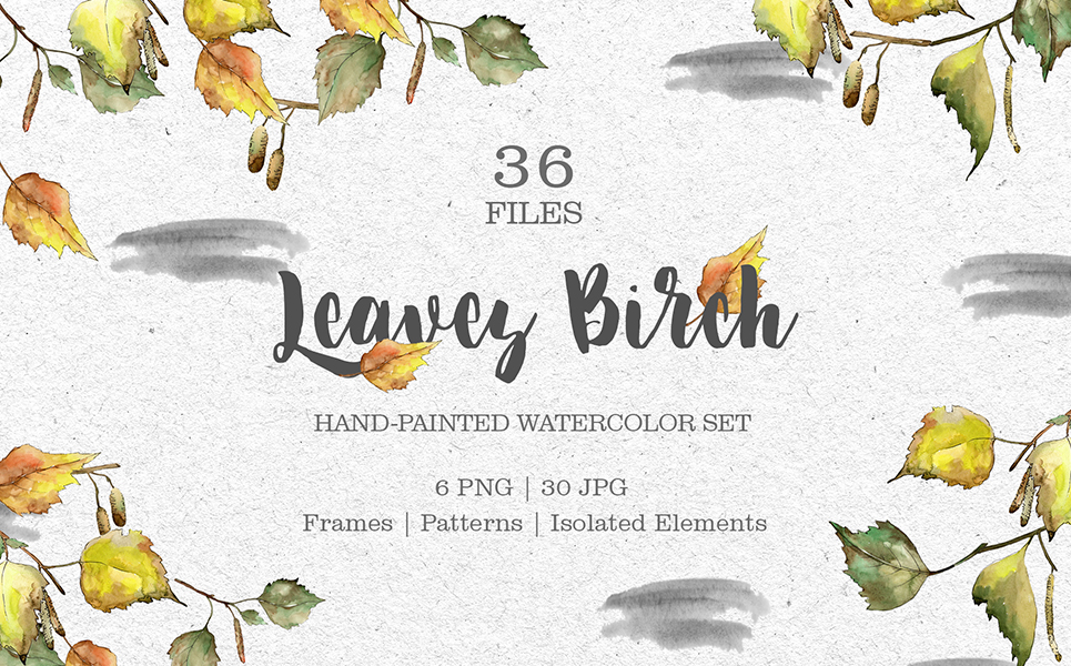 Leaves Birch Watercolor Png Illustrations