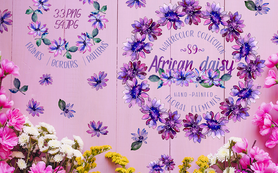 African Daisy Watercolor png Illustrations