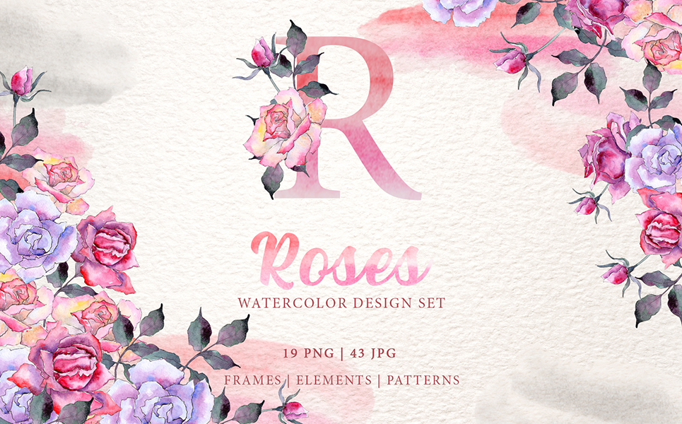 Pink Roses Watercolor png Illustrations