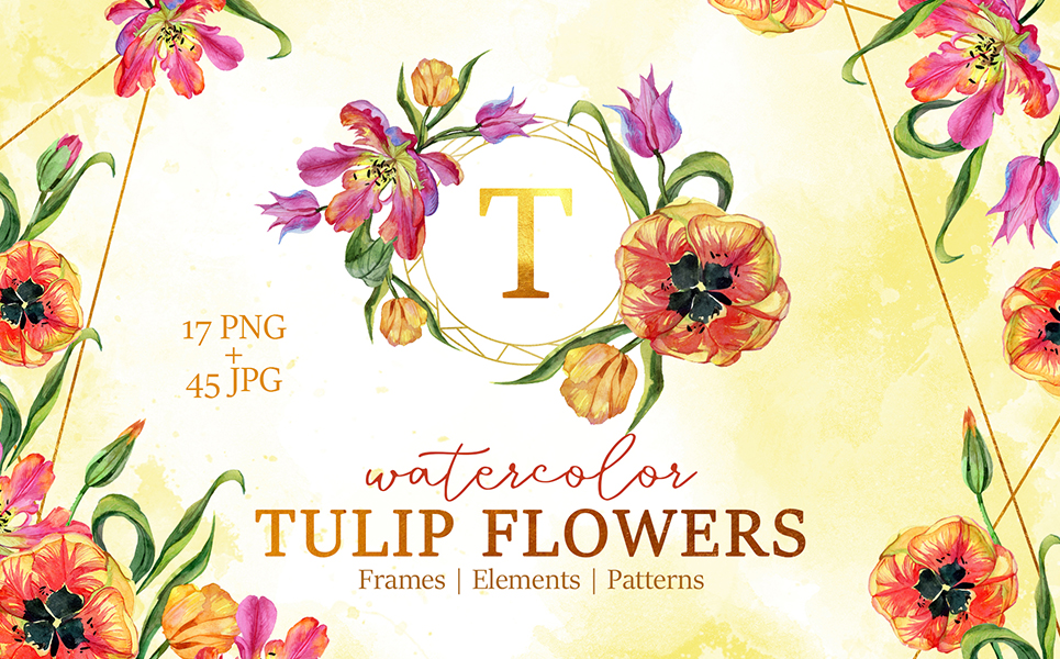 Super Tulip Red Flowers Watercolor Png Illustrations