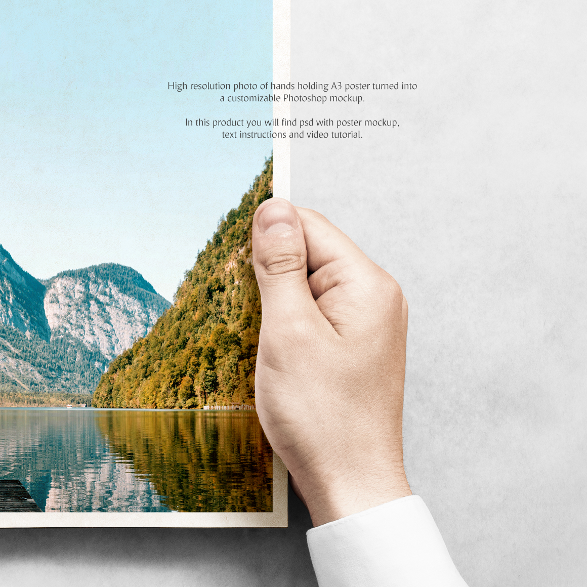 Poster Product Mockups