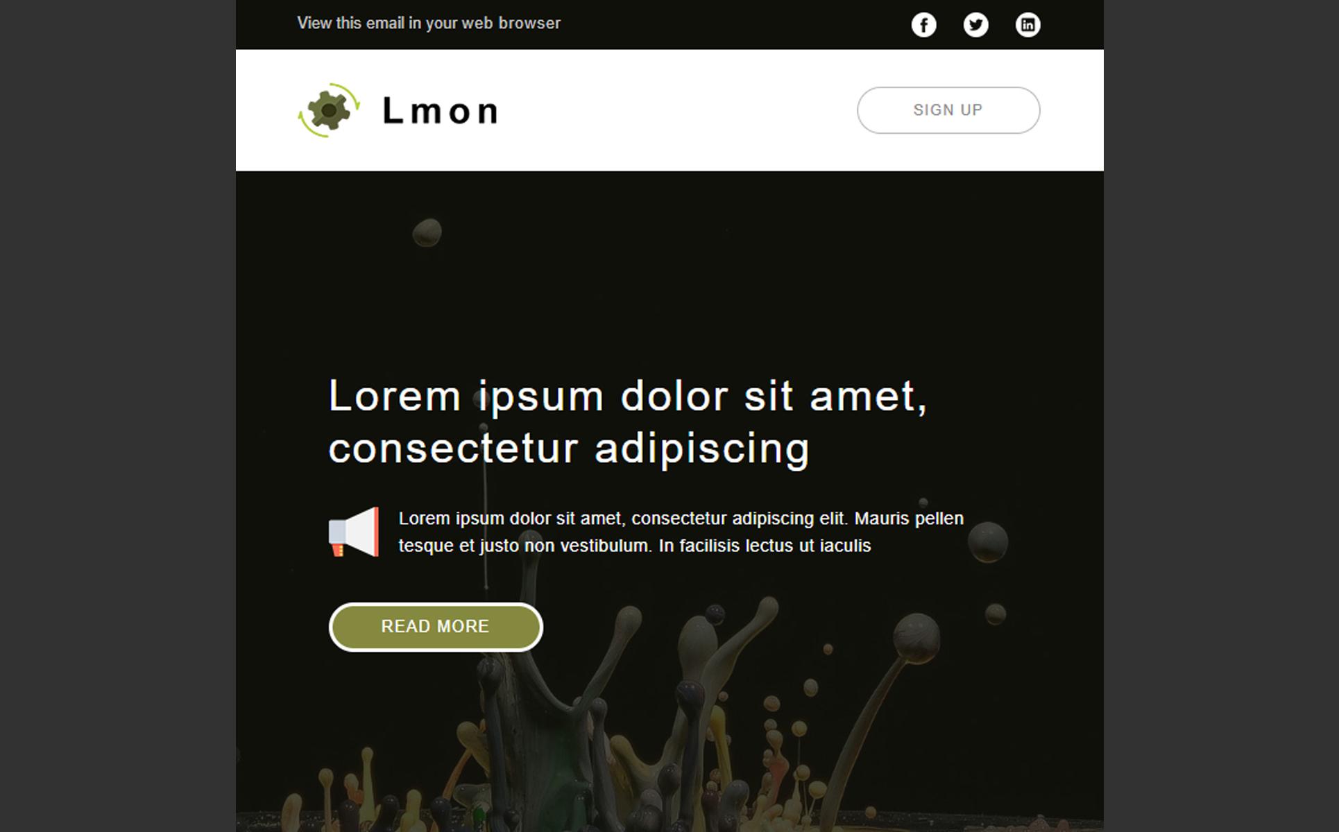 Lmon - Multipurpose Newsletter Template