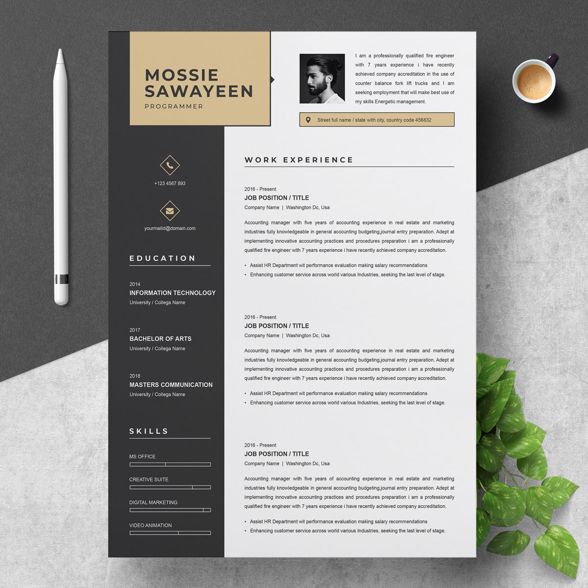 Mosee Savayeen Resume Template