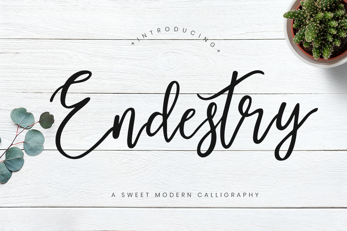 Endestry Modern Calligraphy Fonts