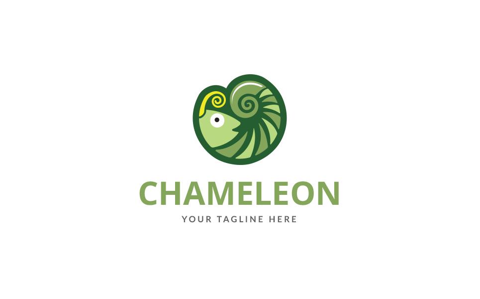 Chameleon color Logo Template